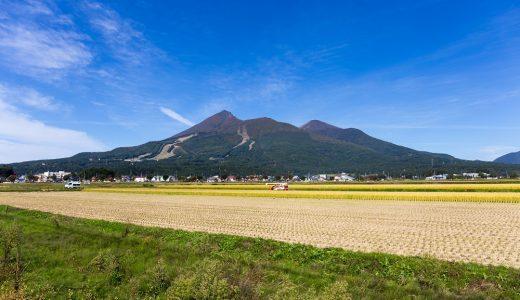 福島県産の農産物等の生産・流通・販売段階の実態を調査したレポートのご紹介