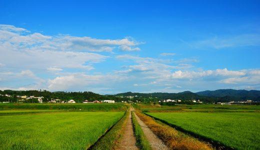 福島県の農産物における風評被害と課題