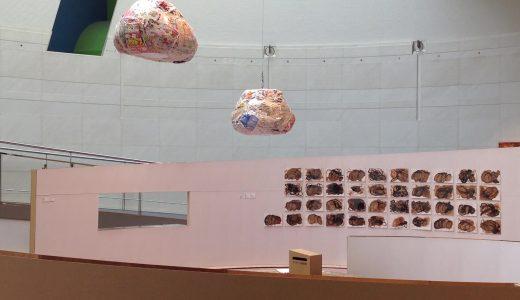 日本財団DIVERSITY IN THE ARTS 企画展「ミュージアム・オブ・トゥギャザー」にて、障害のある方々にクワイエットアワーや今回の展示、普段感じていることなどについてお話を聞きました