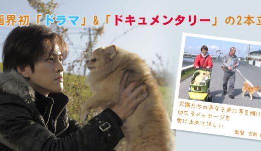 【8/4開催】ソーシャルスタンド #22  映画『ノー・ヴォイス』を見て、人間と動物の関係性を考える